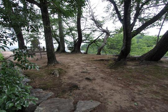 20100613_matsusaka_castle-17.jpg
