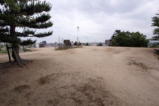 20100613_matsusaka_castle-32.jpg