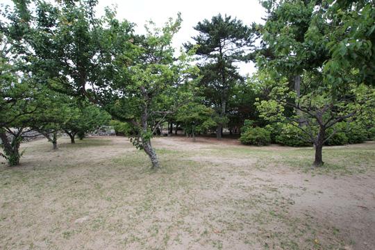 20100613_matsusaka_castle-44.jpg