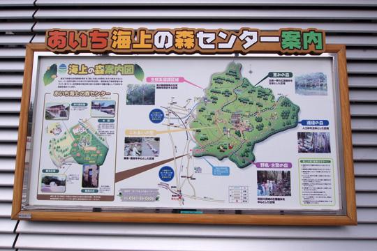 20100613_yakusa-01.jpg