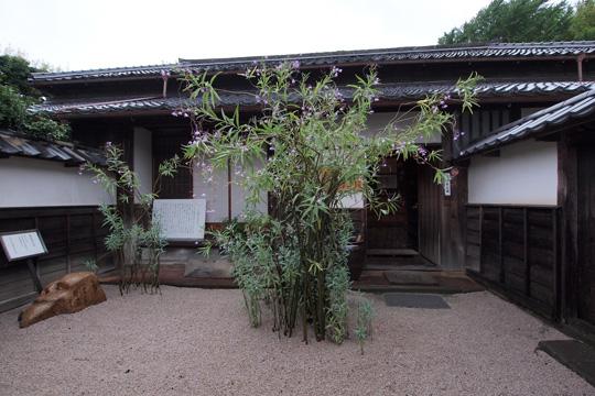 20100812_yakumo_koizumi_m-03.jpg