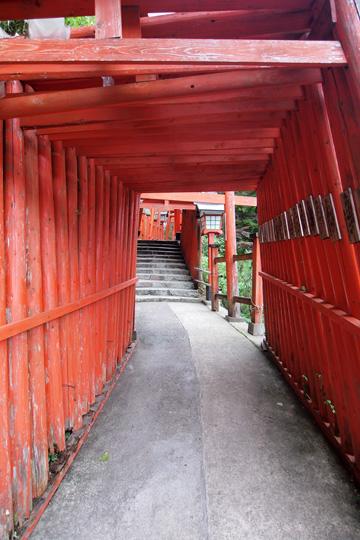 20100813_tsuwano-06.jpg