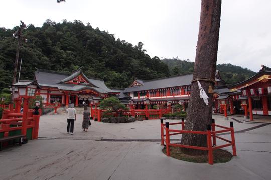 20100813_tsuwano-09.jpg