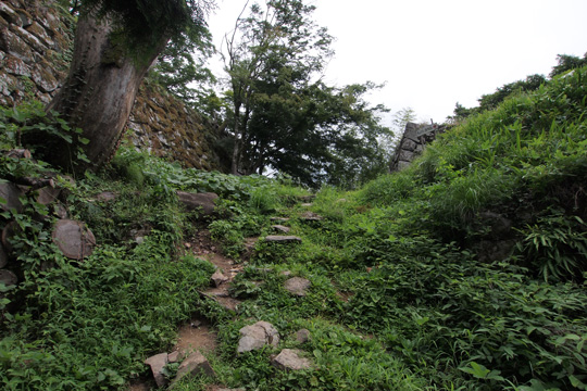20100813_tsuwano_castle-32.jpg