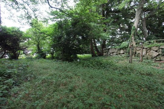 20100814_hagi_castle-53.jpg