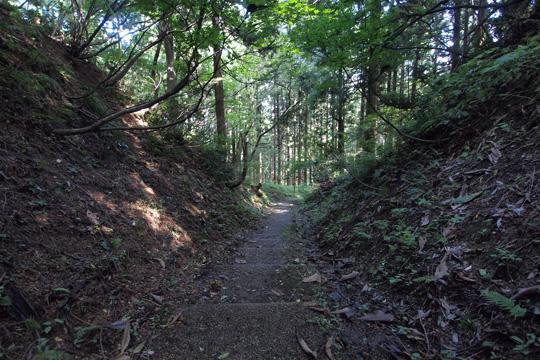 20101011_kasugayama_castle-14.jpg