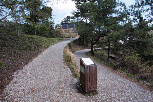 20110429_kinojo_castle-28.jpg