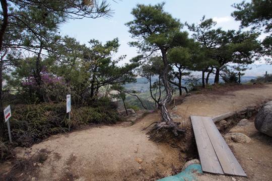 20110429_kinojo_castle-48.jpg