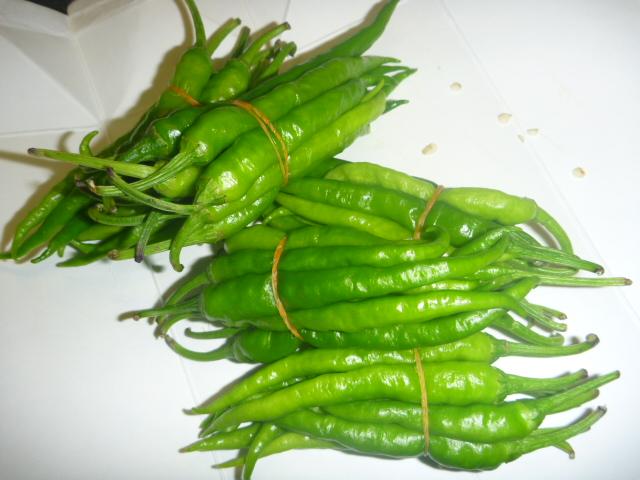 柚子胡椒 (2)