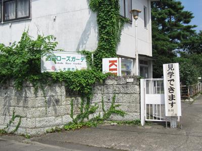 0820石田ばら