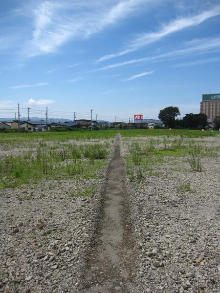 ゼロダテ 村山さん 2011