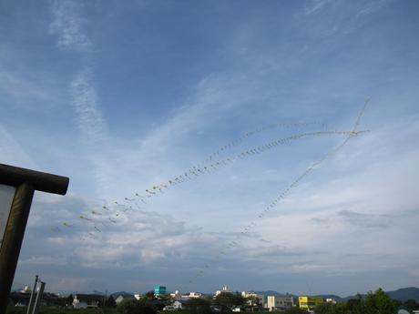 凧 300個