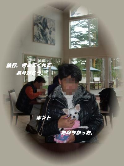 abc+177_convert_20101008222611_20101008224956.jpg