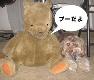 ZP_bestfriend.jpg
