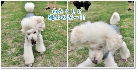 2012-06-10_02.jpg