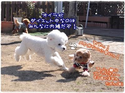 DSC_5103.jpg