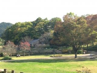 飛鳥歴史公園 芝生広場