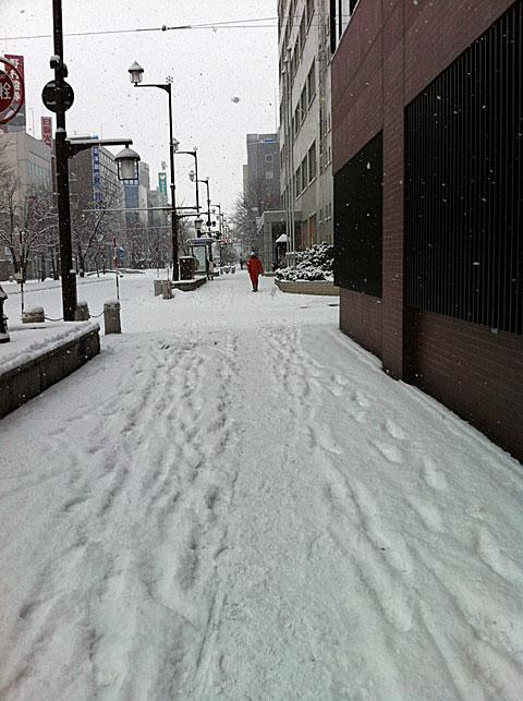 20111201walk.jpg