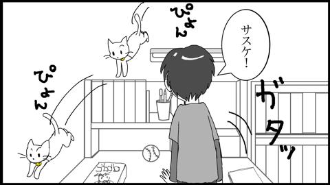9心配12(変換後)