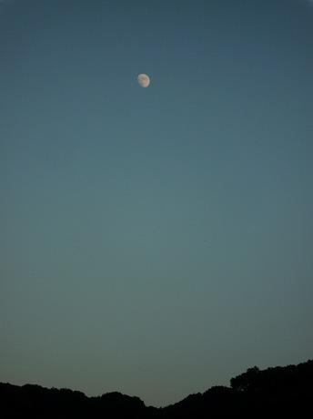 夕陽と月4