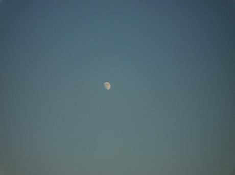 夕陽と月2