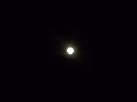 夕陽と月7