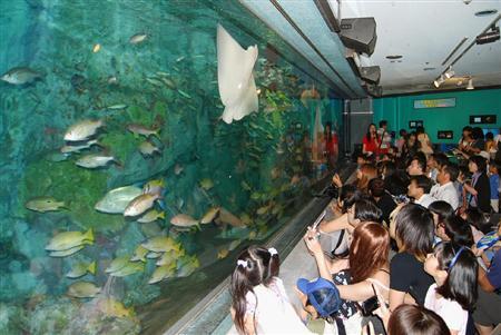 池袋のサンシャイン国際水族館、31日で休館1