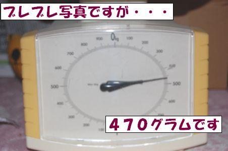 20101002-3.jpg