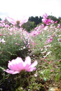 2010_1012_1024.jpg