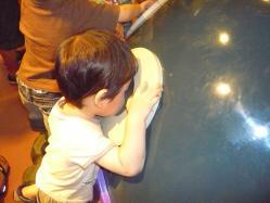 20100813アンパンマンミュージアム2