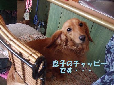 suzukityounan.jpg