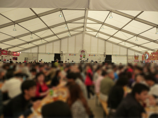 20101002fest1.jpg