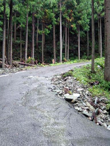 tokushima-r250-4.jpg
