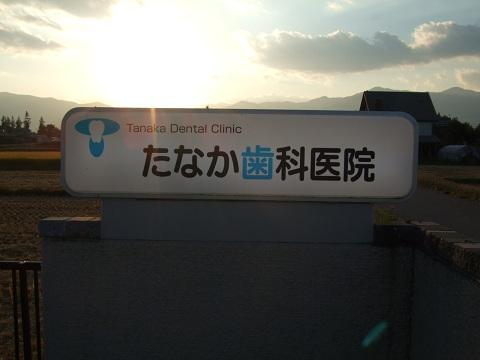 DSCF6246.jpg