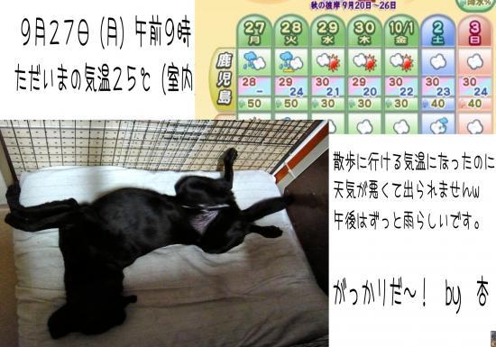 20100927_convert_20100927093137.jpg