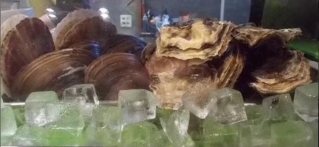 貝、3種類