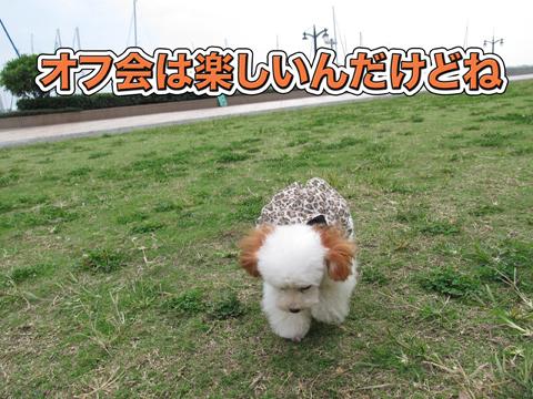 01_20111106004441.jpg