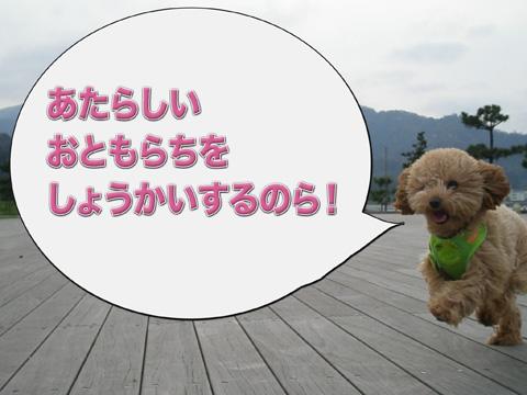 01_20120422234943.jpg