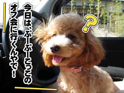 03_20111105000757.jpg