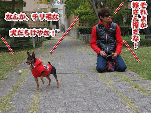 03_20111108234343.jpg