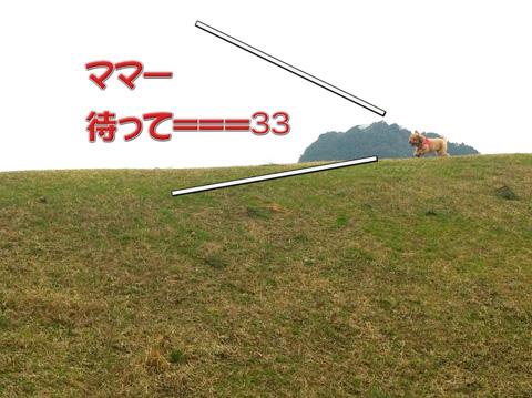 03_20120311082024.jpg