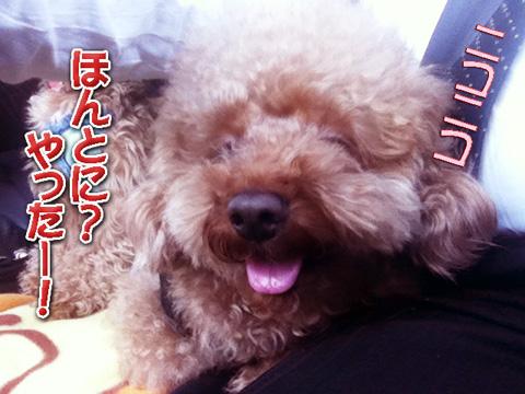 03_20120331162332.jpg
