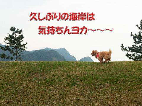 04_20120311082025.jpg