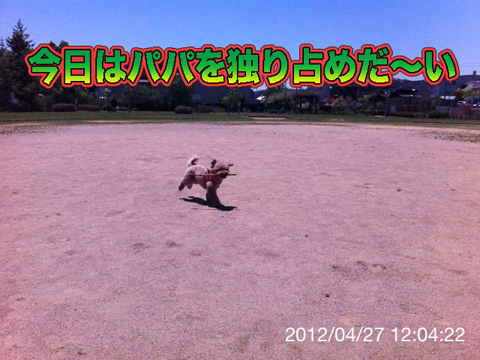 04_20120428092914.jpg