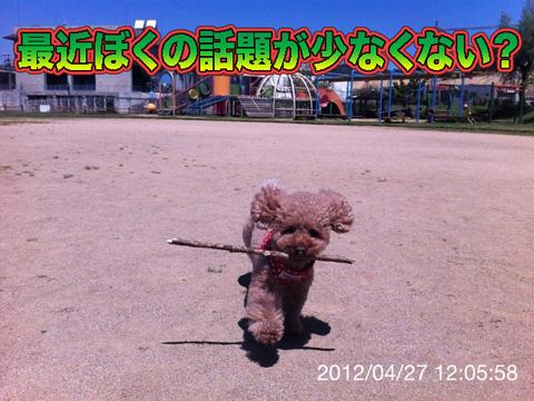 05_20120428092913.jpg