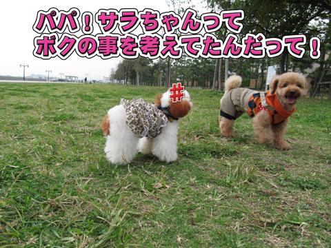07_20111106004407.jpg