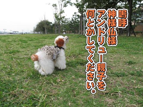 08_20111106004407.jpg