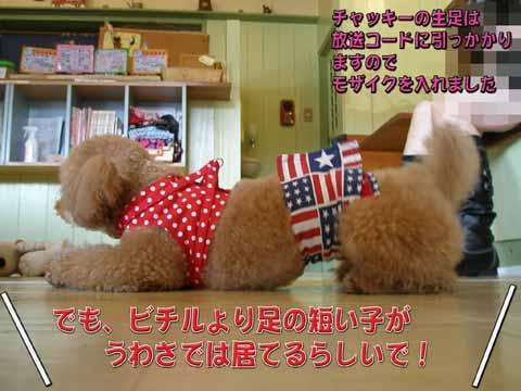 09_20110205001022.jpg