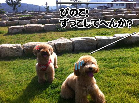 09_20111031233149.jpg