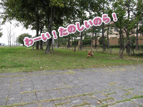 09_20111106004406.jpg